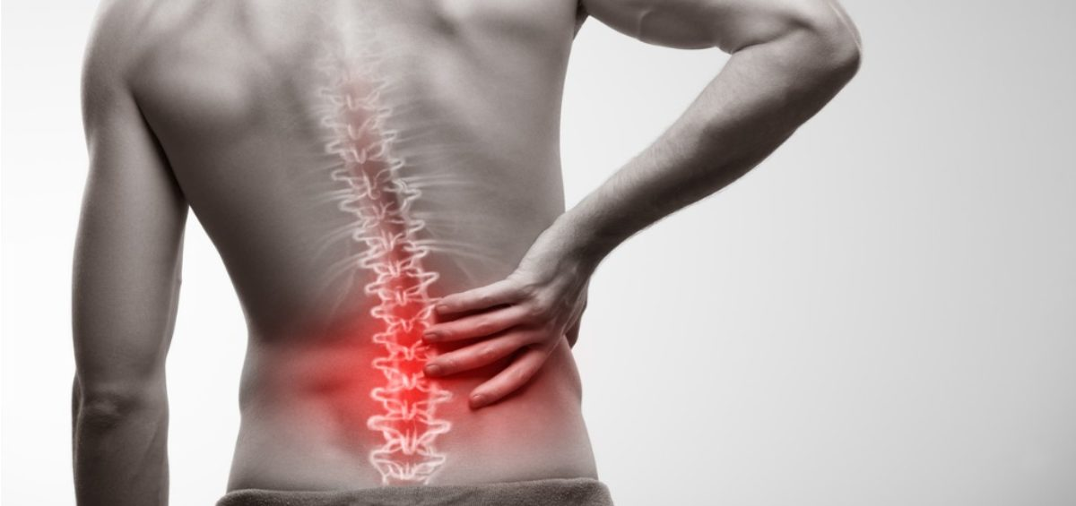 The Human Cost of Musculoskeletal Disorders